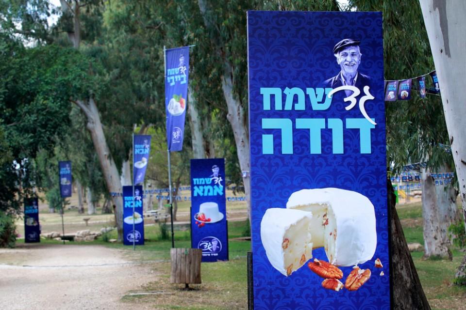 פסטיבל גד - תמונה 2